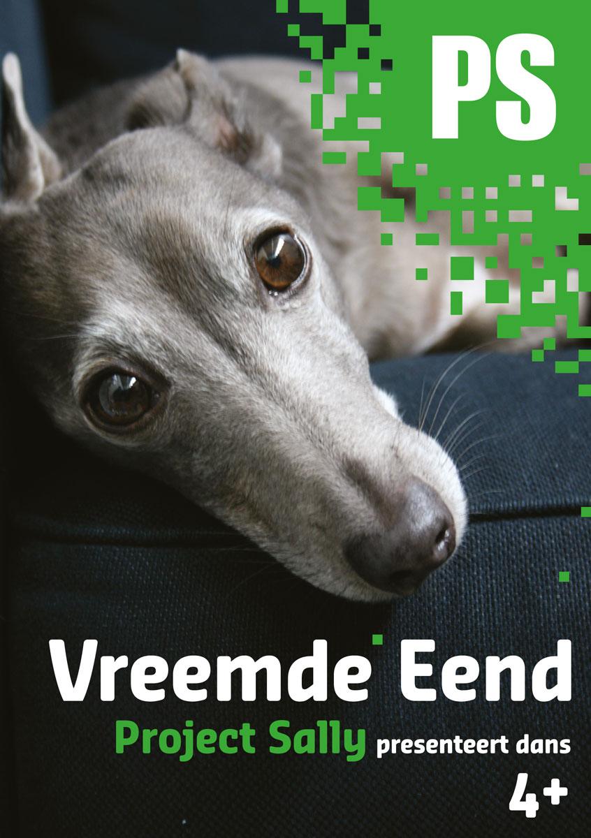 Project Sally Vreemde Eend poster