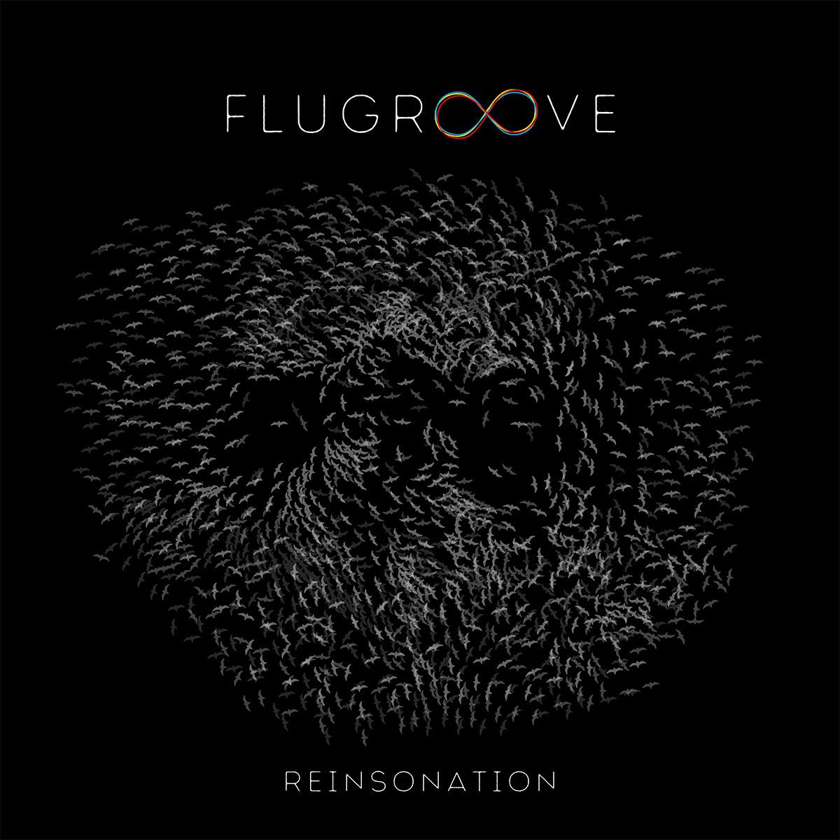 FLUGROOVE - REINSONATION